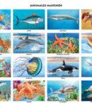 [:es]Animales marinos[:]